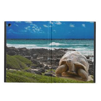 海の端の大きいカメ iPad AIRケース