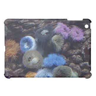 海の素晴らしさHDのiPadの場合-珊瑚礁 iPad Miniカバー
