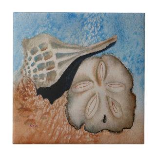 海の貝のタイル 正方形タイル小