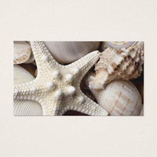 海の貝のヒトデの背景-ビーチの貝 名刺