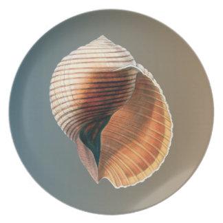 海の貝のヴィンテージ プレート