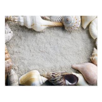 海の貝の砂の背景-ビーチの貝はカスタマイズ ポストカード