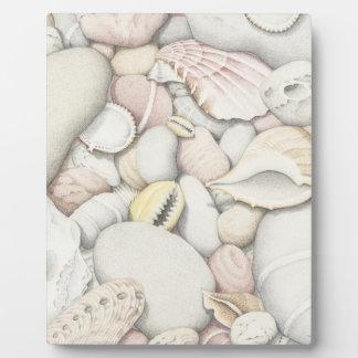 海の貝及び小石のプラク-イーゼルとの8x10 フォトプラーク