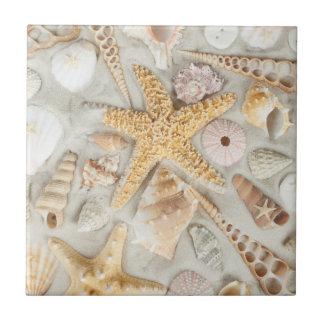 海の貝 タイル