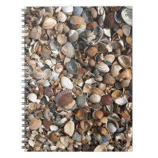 海の貝 ノートブック