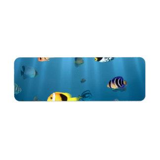海の魚 ラベル