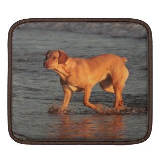 海のiPad 2の袖の美しい犬 iPadスリーブ