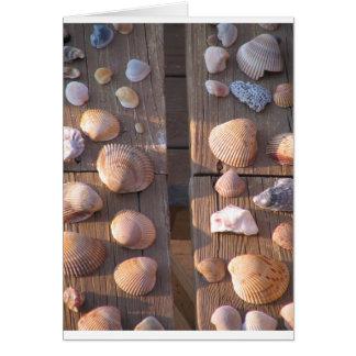 海はメッセージカードを殻から取り出します カード