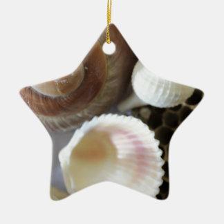海は写真を殻から取り出します セラミックオーナメント