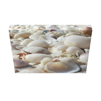 """海は14""""をx 11""""、1.5""""、独身の殻から取り出します キャンバスプリント"""