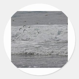海及び砂のパイパー! ラウンドシール
