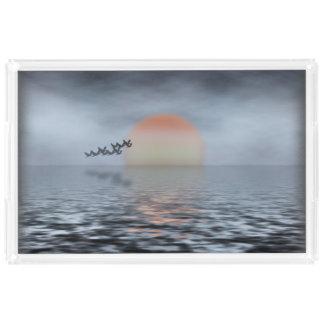 海地平線 アクリルトレー