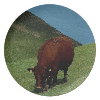 海岸でさまよっているデボン南ルビー色の赤い牛 プレート