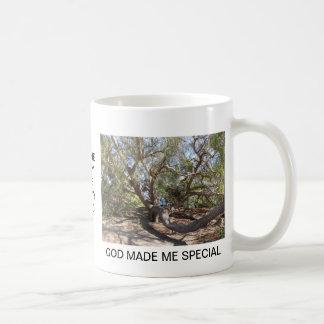 海岸のサンタ・バーバラの近くの不規則に広がる木 コーヒーマグカップ