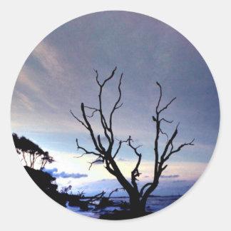 海岸の単独木 ラウンドシール