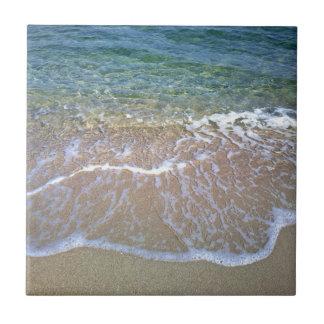 海岸の陶磁器の写真のタイル タイル
