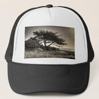 海岸のCypress キャップ
