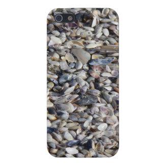 海岸のiPhoneの例による貝殻 iPhone 5 カバー