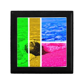 海岸 ギフトボックス