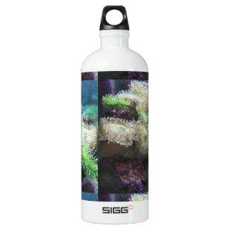 海底世界 ウォーターボトル