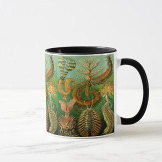 海底色 マグカップ