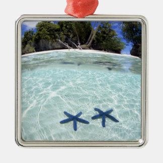 海星、石の島、パラオ諸島2 メタルオーナメント