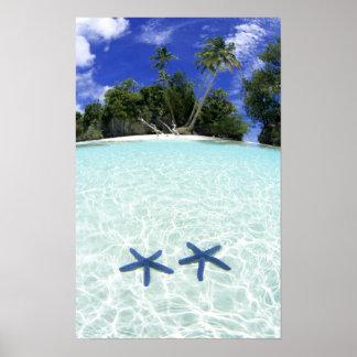 海星、石の島、パラオ諸島 ポスター