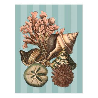 海洋生物のシルエット ポストカード