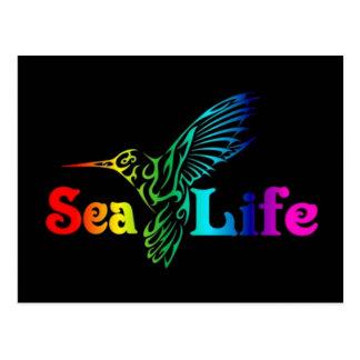 海洋生物のハチドリ ポストカード