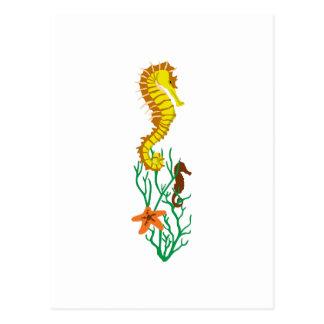 海洋生物のボーダー ポストカード
