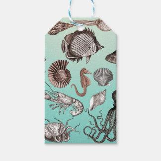 海洋生物 ギフトタグ