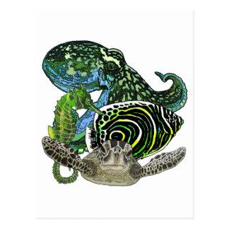 海洋生物 ポストカード