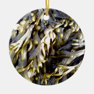 海藻 セラミックオーナメント
