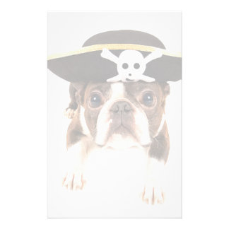 海賊として服を着るボストンテリア犬 便箋