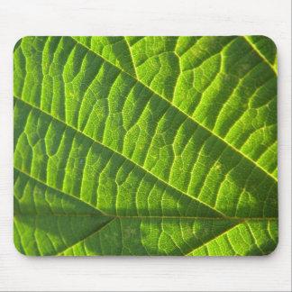 涼しい緑のleafprint マウスパッド