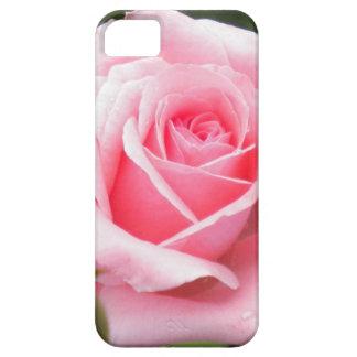 淡いピンクのバラのiPhone 5の箱 iPhone 5 ケース
