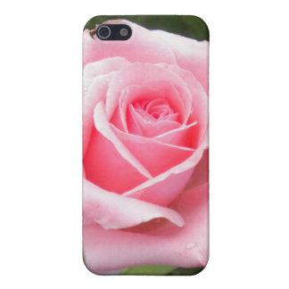 淡いピンクのバラのiPhone 5cケース iPhone 5 カバー