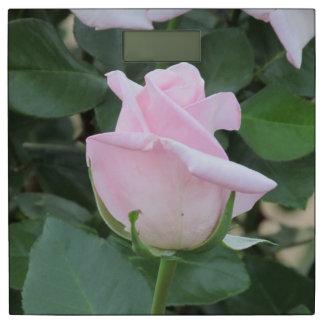 淡いピンクのバラ 体重計