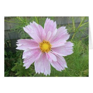 淡いピンク及び緑宇宙- --- カード