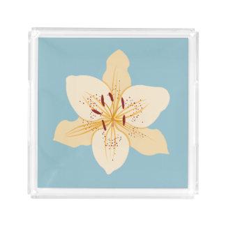 淡いブルーのワスレグサのイラストラティブデザイン アクリルトレー