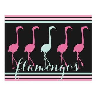 淡いブルーの4羽のピンクのフラミンゴ1 ポストカード