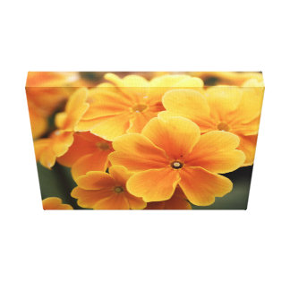 淡い色のなオレンジ花びら キャンバスプリント