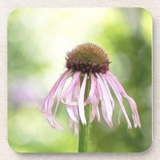 淡い色のなConeflower - Echinacea Pallida コースター