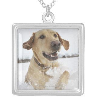 深い雪を通って跳んでいるラブラドル・レトリーバー犬 シルバープレートネックレス