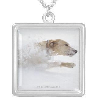 深い雪を通るラブラドル・レトリーバー犬のランニング シルバープレートネックレス