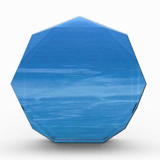 深く青い海 表彰盾