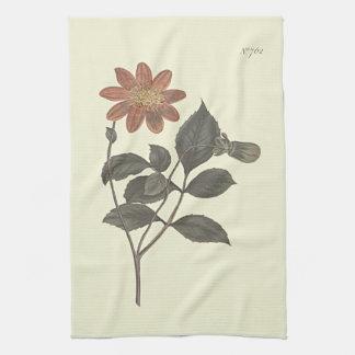 深紅によってはダリアの植物の絵が開花しました キッチンタオル
