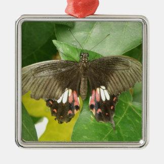 深紅のアゲハチョウの蝶オーナメント メタルオーナメント