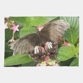 深紅のアゲハチョウの蝶マクロ台所タオル キッチンタオル