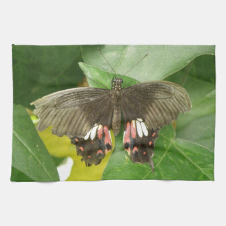 深紅のアゲハチョウの蝶台所タオル キッチンタオル